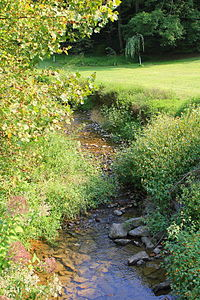 Mouse Creek looking upstream.JPG