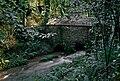 Muiño en Rego da Xesteira, Peiro de Abaixo, Celas de Peiro, Culleredo, Galiza.jpg