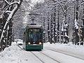 Munkkiniemen puistotie tramway.jpg