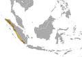 Muntiacus montanus.png