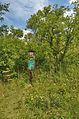 Národní přírodní památka Růžičkův lom, Čelechovice na Hané, okres Prostějov (02).jpg