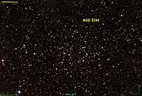 NGC 2354 DSS.jpg