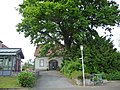 Naturdenkmal OS 00136 Eiche Neuenkirchen Melle Datei 3.jpg