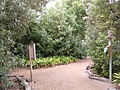 Nature Trail, SF Zoo 2.JPG
