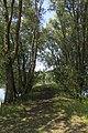 Naturschutzgebiet Am Ginsterpfad.jpg