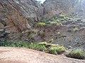 Navidhand Lake , Navidhand Valley , Khyber Pakhtunkhwa, Pakistan - panoramio (2).jpg