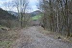 Nebenbahn Finnentrop-Wenholthausen (7066754663).jpg