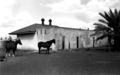 Normanton jail, 1953.tif