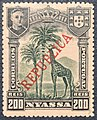 Nyassa SW060 - 1911.JPG