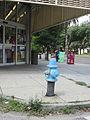 Oak Carrollton Blue Fire Hydrant.jpg
