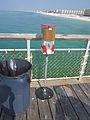 Okalooska Pier kibblematic.JPG