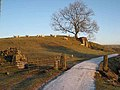 Old limekiln near Rinnion Hills - geograph.org.uk - 637106.jpg