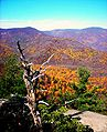 Old rag view1.jpg