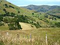 On the way to Akaroa, New Zealand (South Island) (3423382699).jpg