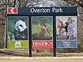 Overton Park Billboard Sam Cooper at E Parkway Memphis TN 4.jpg