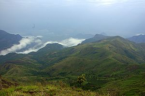 Palani Hills - A scenic view of the hills