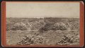 Palestine Park, by Lloyd (fl. 187-) 2.png