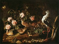 Paolo Porpora: Still-Life with Quails, an Owl and a White Stilt