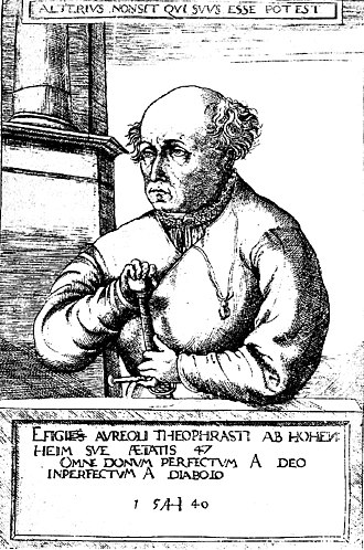 Paracelsus - The 1540 portrait by Hirschvogel.