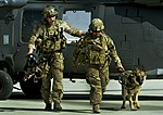 Pararescueman train with Army, military canines (9242362112).jpg