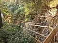 Parco Miramare - pergola rotta.JPG