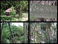 Parque Knoop 000b.jpg