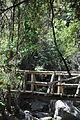 Parque Nacional La Campana Sendero del Andinista 01.JPG