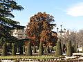 Parque del Buen Retiro 02232013 0473.JPG