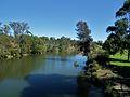Parramatta River - Parramatta, NSW (7834148466).jpg