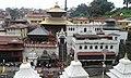Pashupati Temple.jpg