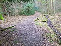 Path, Langley Wood - geograph.org.uk - 1170140.jpg