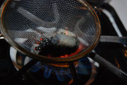 Peganum harmala seeds used as incense