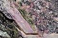 Pegmatite de tourmalines rubellite, elbaïte, mica (Brésil).JPG