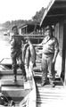 Photograph of Bull Fish and Catfish - NARA - 2129083.tif