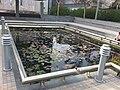 PikiWiki Israel 30251 POOL.JPG