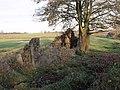 Playhill Ruins - geograph.org.uk - 1573593.jpg