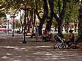 Plaza Pinto.jpg