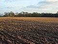 Ploughed field, Ashampstead - geograph.org.uk - 678149.jpg
