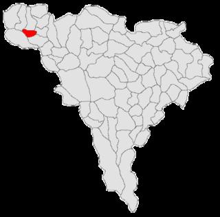 Poiana Vadului Commune in Alba County, Romania