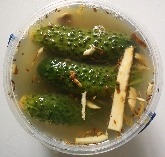 File:Polish cucumbers malosolne.jpg