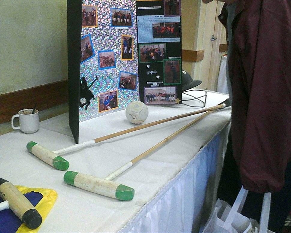 Polo equipment