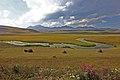 Polopouštní krajina u Paravani Lake - panoramio.jpg
