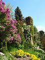 Poltava Botanical garden (91).jpg