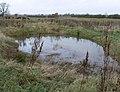 Pond near Sambury Farm - geograph.org.uk - 645882.jpg