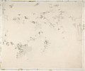 Portrait of the Artist (recto); Fragment of a Landscape Study (verso) MET DP805574.jpg