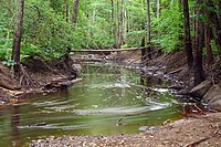 Poruni river.jpg