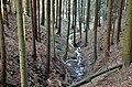 Potůček nad Mertovou dírou - panoramio.jpg