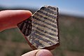 Pottery Shard Near Tsankawi (5989098266).jpg