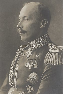 Princ Vidi (portret).jpg