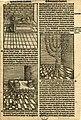 Print, book-illustration (BM 1923,1112.81 1).jpg